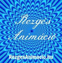 Rezgés Animáció logo