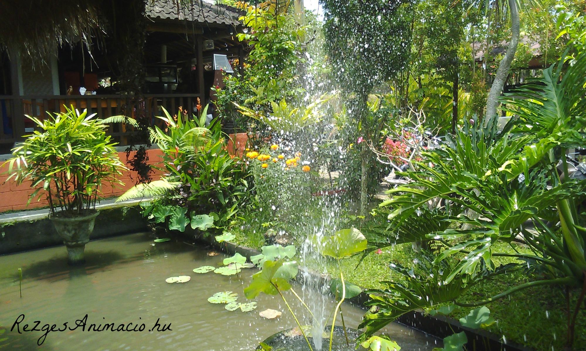 Lalalili Restaurant garden, Ubud